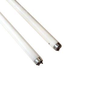 형광등램프